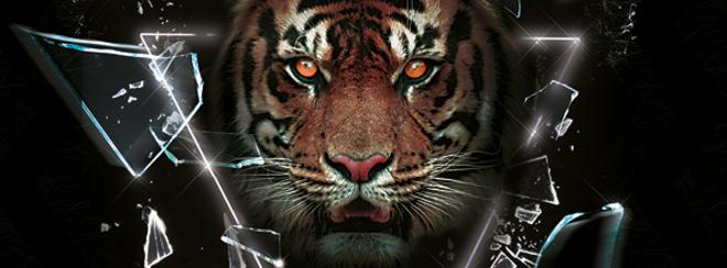 BIG WEEKENDER - Tiger Saturdays - The Big Night Out